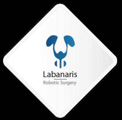 Λογότυπο Λαμπανάρης